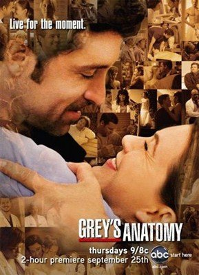 Анатомия Грей (Анатомия страсти) / Grey's Anatomy (3 сезон/2006)